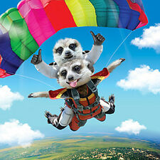 3D Holographic Birthday Card Skydiving Meerkats, Funny Meerkat Greeting Card
