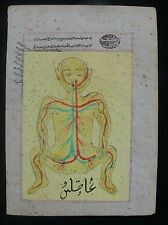 Persian c.19thC. Hand Painted Anatomical Illustration After Mansur ibn Ilyas