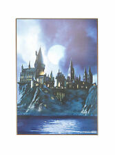 HARRY POTTER HOGWARTS CASTLE SCHOOL FOR WITCHES WIZARDS WOOD WALL ART BRAND NEW