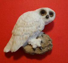 Snowy Owl Large Fridge Magnet Vintage