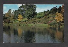 """c1970s View of the """"Norway Maples"""" : Hodnet Hall Gardens"""