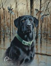 Vintage Replica Tin Metal Sign Mallard Dog Duck unlimited Black Lab Puppy 1203