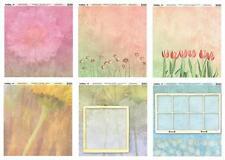 TwelveBy12 Heavyweight Scrapbook Papers 12x12 Window Garden/Color Flower 6 Sheet