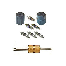 Santech Industries Automobile A/C System Caps & Valves Kit With Removal tool