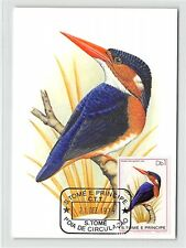 S. TOME MK 1979 VÖGEL EISVOGEL ZWERGFISCHER KINGFISHER MAXIMUM CARD MC CM /m275