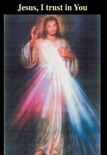 Jesus, I trust in You by Domo Qui (2007, Hardcover)
