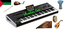 Premium Arabic.Set Styles and Sounds for Korg Pa800 Pa2x Pa3x pa4x Pa900 Pa600