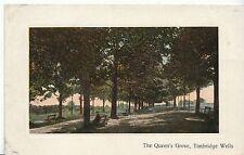 Kent Postcard -The Queen's Grove - Tunbridge Wells   ZZ245