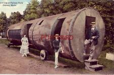 SPRUCE LOG AT PALMER PARK, DETROIT, MICH two men & a woman visit attraction