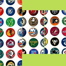 100 Precut assorted NHL All HOCKEY Teams BOTTLE CAP IMAGES 1 inch discs round