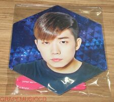 2PM WORLD TOUR GO CRAZY IN SEOUL CONCERT GOODS WOOYOUNG HANGING IMAGE PICKET
