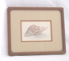 Sea Shell Theme(A) D. Morgan-Signed/Double Matted/Framed  10 1/2 X 8 1/2""