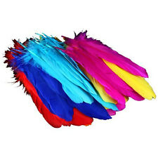 72Pcs Assorted Color Feather Diy Ornaments Goose Plume Beauty Wedding