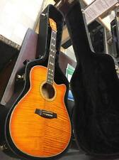 Ibanez AEF30 Acoustic/Electric Guitar W/Case