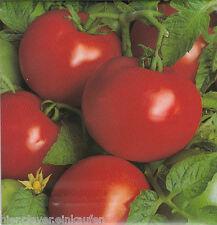 Tomate Tamina Freilandsorte von feinstem Geschmack früh ca. 60 Korn / Seeds