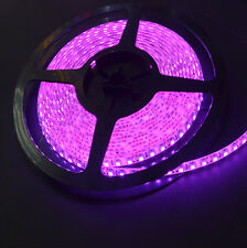 IP65 Purple  Waterproof 5M 600Leds 3528 SMD Flexible LED Strip Light Lamp