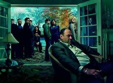 "The Sopranos poster - James Gandolfini poster - 12"" x 17"""