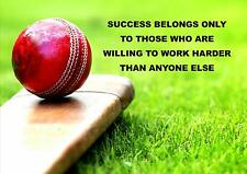 CRICKET MOTIVATIONAL QUOTE SIGN/ POSTER / PRINT / PICTURE SUCCESS BELONGS...