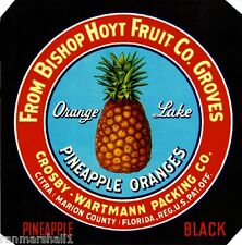 Citra Marion County Florida Pineapple Black Orange Fruit Crate Label Art Print
