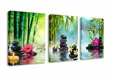 3 Panels Framed Home Decor Canvas Print Painting Picture Modern Wall Art Zen Spa