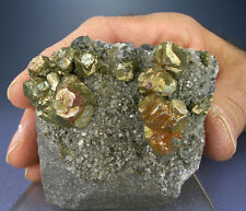 LARGE REDDISH GOLDEN PYRITE CRYSTALS w GALENA, DOLOMITE, JOPLIN, MISSOURI