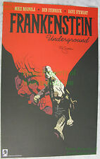 Frankestein Underground SIGNED Lithograph Mike Mignola From the pages of Hellboy