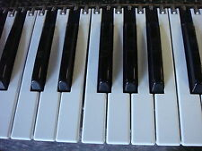Touche KB GENUINE Roland JW50 JX-1 JX305 XP-50 JV30 35 JV original Key + Spring