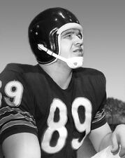 1962 Chicago Bears MIKE DITKA Glossy 8x10 Glossy Photo NFL Football Print Poster