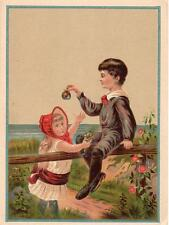 1880's STAR SOAP*SCHULTZ*ZANESVILLE OHIO*LARGE TRADE CARD*CHILDREN*SEASIDE*BEACH