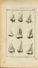 rev john caspar lavater 1797 physiognamy plate. nine noses (  upright mind )