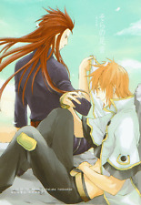 Tales of the Abyss Doujinshi Asch x Luke Footsteps in the Sky funyamafu
