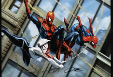 Troy Don SIGNED Ultimate Spiderman Marvel Comic Art Print ~ Spider Gwen