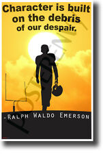 Character is Built on the Debris Despair - Ralph Waldo Emerson - Quote Poster