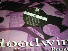 Hoodwink Records Sampler # 2 VINYL DJ Sploo Space Angels Sneekee Boo Boo breaks
