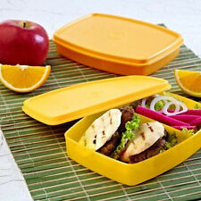Tupperware Classic Slim Lunch BIG - Best Lunch For Schook Kids