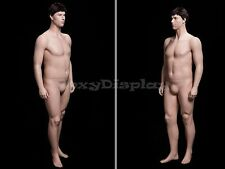 Fiberglass Male Display Mannequin Manikin Manequin Dummy Dress Form #PLUSMAN