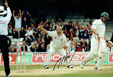 Matthew HOGGARD Signed Autograph 12x8 Photo AFTAL COA England Bowler CRICKET