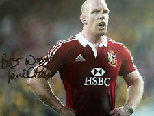 Paul Connell firmado británico & Irlandés Leones enorme Rugby Foto
