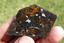 THIN 12.9 gram SEYMCHAN METEORITE pallasite - Beautiful GLOWING CRYSTALS