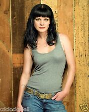 Pauley Perrette / NCIS  8 x 10 / 8x10 GLOSSY Photo Picture Image #2
