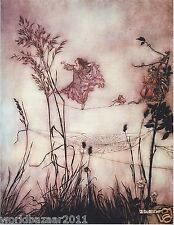 ARTHUR RACKHAM PETER PAN IN KENSINGTON GARDEN FAIRYTALE MOUNTED PRINT