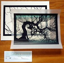 SIGNED - MIKE AND DOUG STARN - STRUCTURE OF THOUGHT - SET OF 2 LTD ED PRINTS