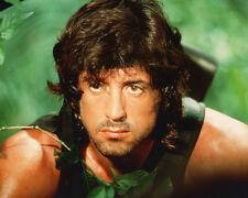 Rambo Sylvester Stallone Génial Jungle 10x8 Photo