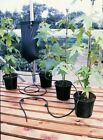 INSTANT DRIP WATERING FED GRAVITY IRRIGATION PLANT GREENHOUSE SYSTEM WATER KIT