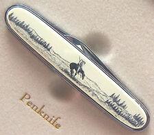 Pocket Knife Barlow Scrimshaw Carved Painted Art End of Trail Penknife 515410 n