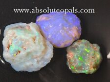 AUSTRALIAN NATURAL  LIGHTNING RIDGE SOLID OPAL ROUGH Nobby PARCEL 42.30 ct  3pcs