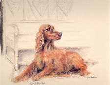 IRISH RED SETTER GUNDOG DOG LIMITED EDITION PRINT - Signed Artist Proof # 16/85