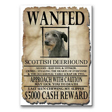 SCOTTISH DEERHOUND Wanted Poster FRIDGE MAGNET