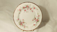 """Paragon Victoriana Rose 6 1/4"""" Bread Butter Plate (s) in Excellent Condition"""