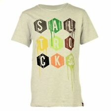 SALTROCK DEVON SURFING HEXAGON TEE T SHIRT GREY MARL 9 10 YR BOYS BNWT £12.99